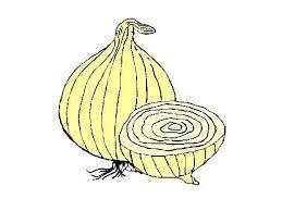 pcc onion logo